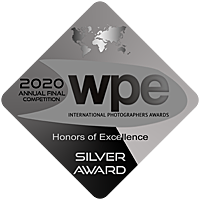 wpe-silver-award-silver-annual-2020